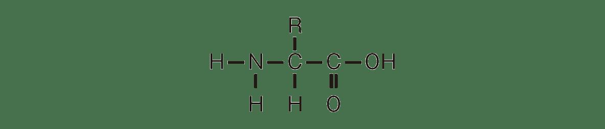 高校 化学 6章 2節 25 2 上にあるアミノ酸の構造式のみ