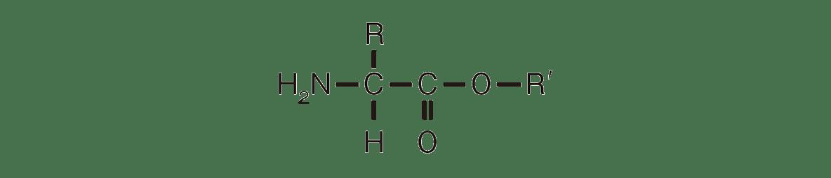 高校 化学 6章 2節 25 2 答えあり、ポイント枠・左下の構造式・矢印・「アセチル化」不要