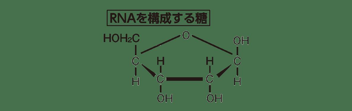 高校 化学 6章 2節 36 1 「RNAを構成する糖」の図のみ