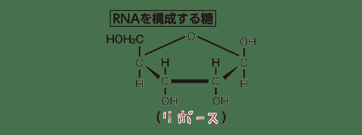 高校 化学 6章 2節 36 1 「RNAを構成する糖」すべて、答えあり