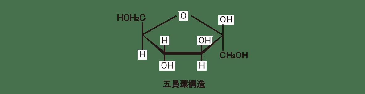 高校 化学 6章 2節 9 1 五員環構造の構造式