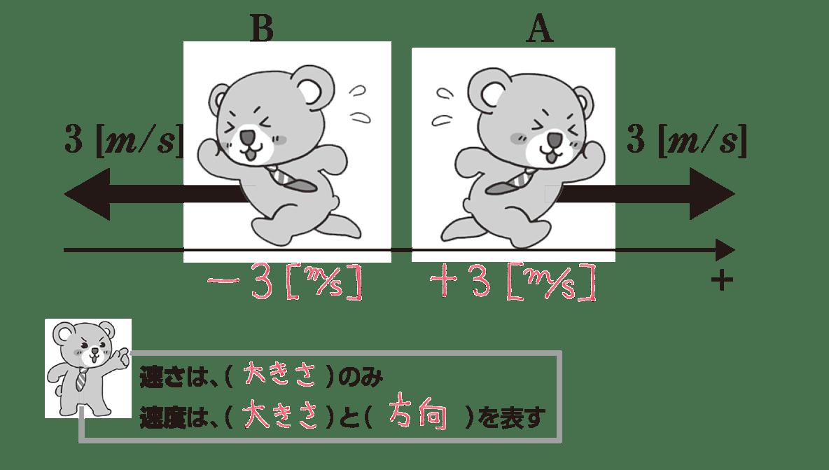 運動と力1 ポイント2 全部答え入り くまA、くまBの下にそれぞれ+3[m/s]、-3[m/s]をかいた図