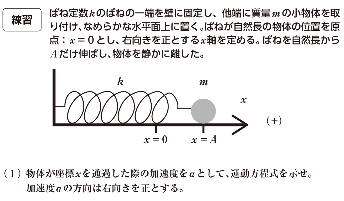 高校物理 運動と力87 練習と(1)の問題文と書き込みなし図