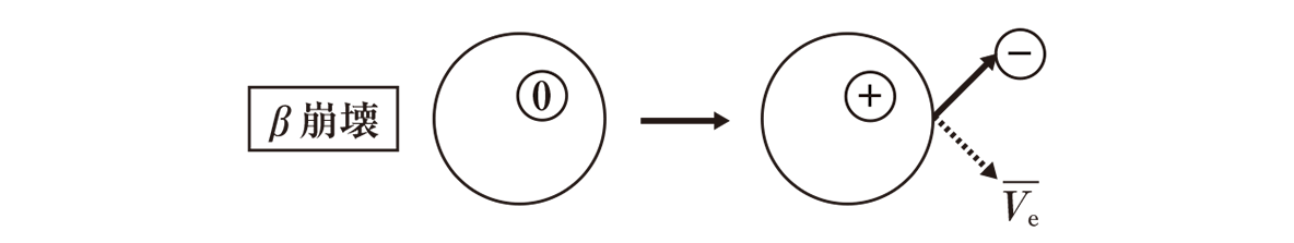 高校物理 原子12 ポイント2 真ん中のB崩壊の図