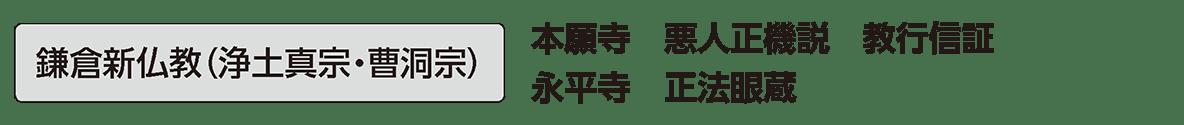 中世の文化5 単語2 鎌倉新仏教(浄土真宗・曹洞宗)