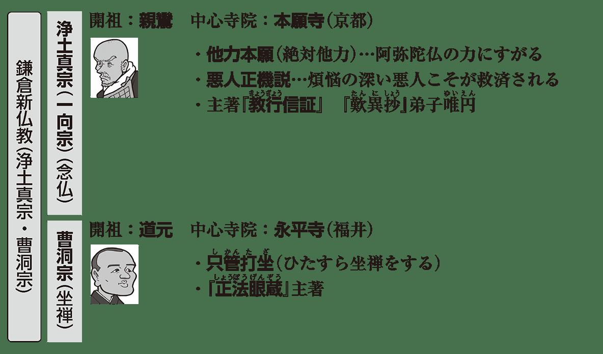 中世の文化5 ポイント2 鎌倉新仏教(浄土真宗・曹洞宗)