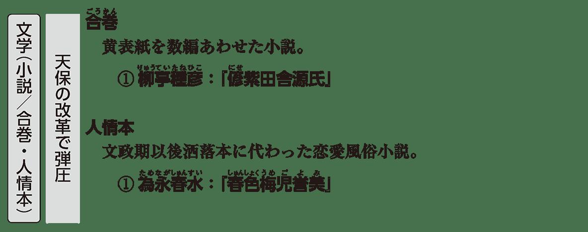 近世の文化16 ポイント3 文学(小説/合巻・人情本)