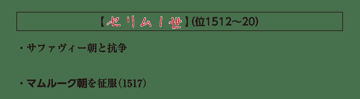 ポ3/セリム1世の項目