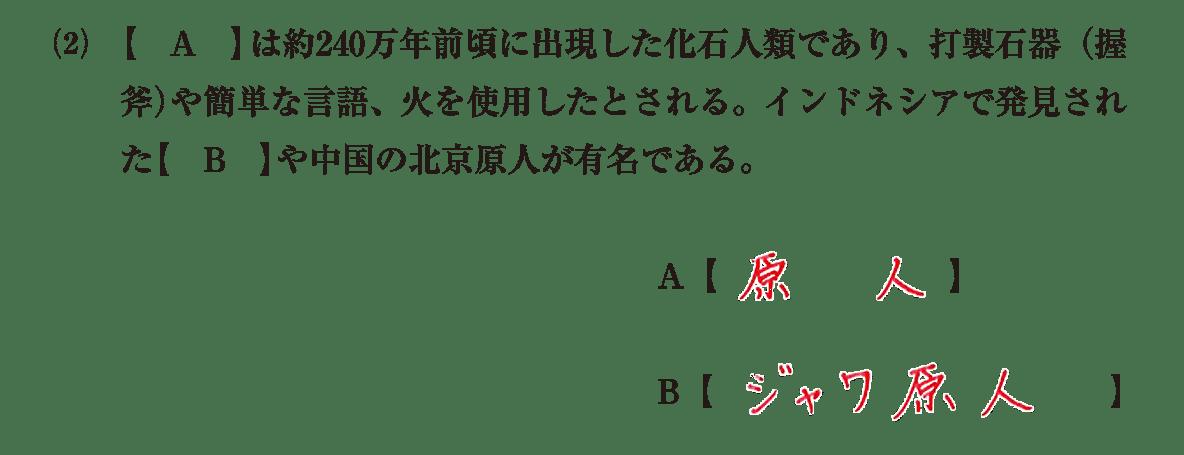 高校世界史 先史時代4 (2)問題文+答え