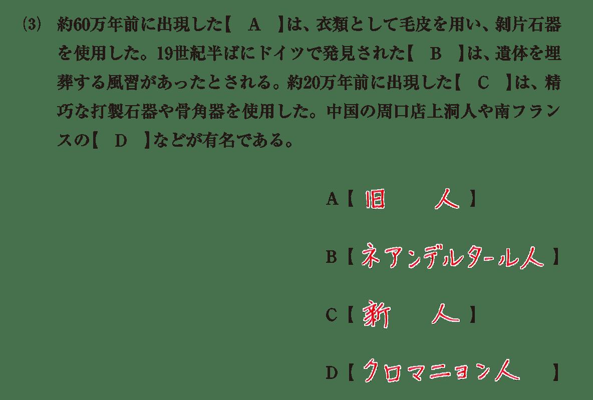 高校世界史 先史時代4 (3)問題文+答え