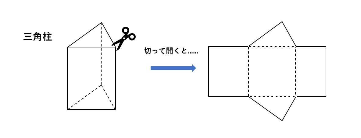 テスト記事 中1 数学1 三角柱の展開図