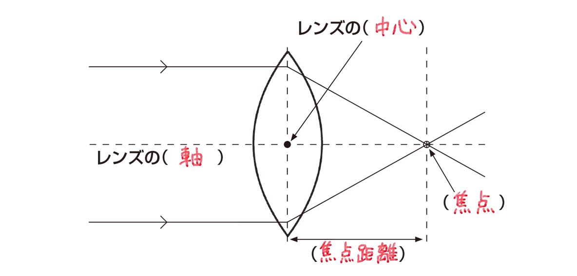 テスト記事 中1 理科4 レンズの説明
